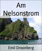 Emil Droonberg: Am Nelsonstrom