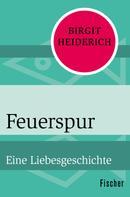 Birgit Heiderich: Feuerspur