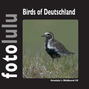 Birds of Deutschland - fotolulus Bildband IX