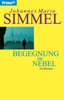 Johannes Mario Simmel: Begegnung im Nebel ★★★