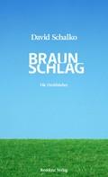 David Schalko: Braunschlag