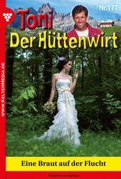 Toni der Hüttenwirt 177 – Heimatroman - Eine Braut auf der Flucht