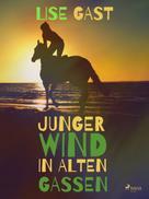 Lise Gast: Junger Wind in alten Gassen