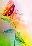 Wolfgang Grunow-Lietz: Die Raupe Frieda und Fridolin der Schmetterling ★★★★