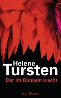 Helene Tursten: Der im Dunkeln wacht ★★★★