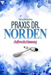 Praxis Dr. Norden 6 – Arztroman - Aufbruchstimmung