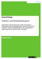 Konrad Stangl: Verkehrs- und Kriminaldelinquenz