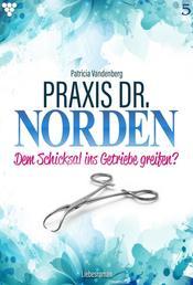 Praxis Dr. Norden 5 – Arztroman - Dem Schicksal ins Getriebe greifen?