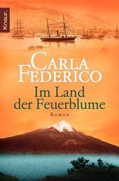 Im Land der Feuerblume - Roman