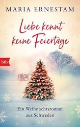 Liebe kennt keine Feiertage - Ein Weihnachtsroman aus Schweden