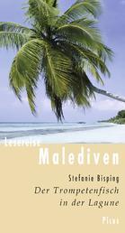 Lesereise Malediven - Der Trompetenfisch in der Lagune
