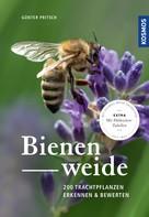 Günter Pritsch: Bienenweide