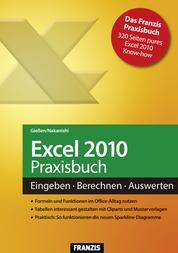 Excel 2010 Praxisbuch - Eingeben, Berechnen, Auswerten