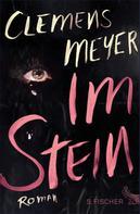 Clemens Meyer: Im Stein ★★★