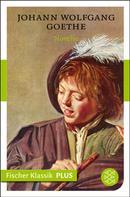 Johann Wolfgang von Goethe: Novelle ★★★★★