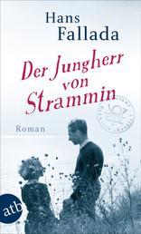 Der Jungherr von Strammin - Roman