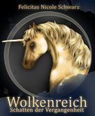 Felicitas Nicole Schwarz: Wolkenreich ★★★