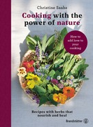 Christine Saahs: Cooking with the power of nature