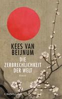 Kees van Beijnum: Die Zerbrechlichkeit der Welt ★★★★