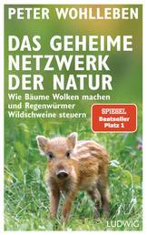 Das geheime Netzwerk der Natur - Wie Bäume Wolken machen und Regenwürmer Wildschweine steuern