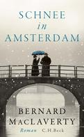 Bernard MacLaverty: Schnee in Amsterdam ★★