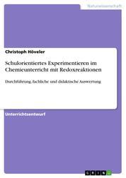 Schulorientiertes Experimentieren im Chemieunterricht mit Redoxreaktionen - Durchführung, fachliche und didaktische Auswertung
