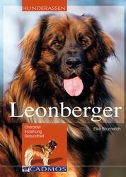 Leonberger - Charakter, Erziehung und Gesundheit