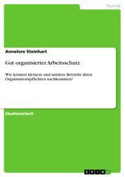 Gut organisierter Arbeitsschutz - Wie können kleinere und mittlere Betriebe ihren Organisationspflichten nachkommen?