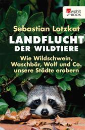 Landflucht der Wildtiere - Wie Wildschwein, Waschbär, Wolf und Co. unsere Städte erobern