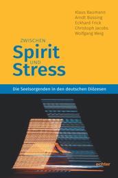 Zwischen Spirit und Stress - Die Seelsorgenden in den deutschen Diözesen