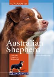 Australian Shepherd - loyal, begeisterungsfähig, intelligent