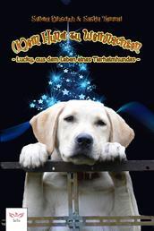(K)ein Hund zu Weihnachten - - Lucky, aus dem Leben eines Tierheimhundes -