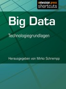 Mirko Schrempp: Big Data ★★★