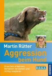 Aggression beim Hund - Ursachen erkennen, Verhalten verstehen und richtig reagieren