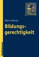 Peter J. Brenner: Bildungsgerechtigkeit
