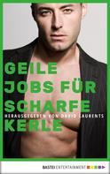 David Laurents: Geile Jobs für scharfe Kerle ★★★