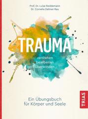 Trauma verstehen, bearbeiten, überwinden - Ein Übungsbuch für Körper und Seele