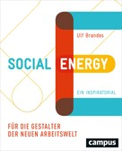 Ulf Brandes: Social Energy
