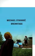 Michael Stavaric: Brenntage ★★★★