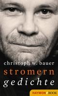 Christoph W. Bauer: Stromern