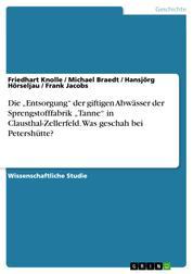 """Die """"Entsorgung"""" der giftigen Abwässer der Sprengstofffabrik """"Tanne"""" in Clausthal-Zellerfeld. Was geschah bei Petershütte?"""