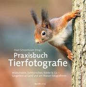 Praxisbuch Tierfotografie - Wildschwein, Eichhörnchen, Robbe & Co. – Säugetiere an Land und am Wasser fotografieren