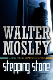Stepping Stone - A Novel from Crosstown to Oblivion