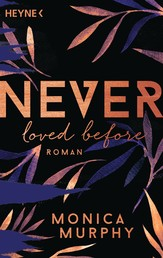 Never Loved Before - Roman