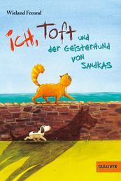 Ich, Toft und der Geisterhund von Sandkas - Roman