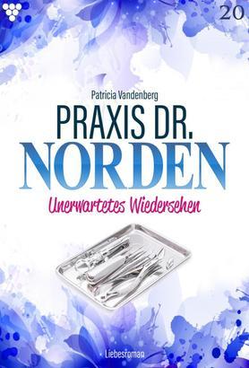 Praxis Dr. Norden 20 – Arztroman