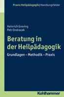 Petr Ondracek: Beratung in der Heilpädagogik