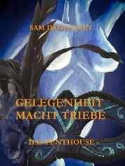 Gelegenheit macht Triebe - Das Penthouse - Erotische Erzählungen
