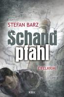 Stefan Barz: Schandpfahl ★★★★