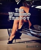 Cindy Julian: The Winning Trilogy